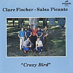 Clare Fischer Crazy Bird