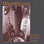 Wumbloozo Come Down Here