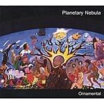 Planetary Nebula Ornamental