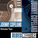 Johnny Copeland Blues Masters, Vol.2