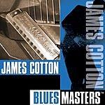 James Cotton Blues Masters
