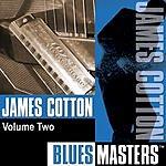 James Cotton Blues Masters Vol.2