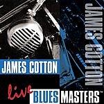 James Cotton Live Blues Masters