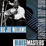 Big Joe Williams Blues Masters