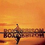 Roy Orbison Golden Days