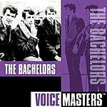 The Bachelors Voice Masters