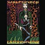 Wolfspider Exterminator