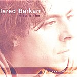 Jared Barkan View Is Fine