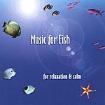 Janet Street Music For Fish