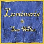 Luminaria Sea Waltz