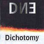 DNE Dichotomy