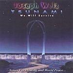 Joseph Welz Tsunami (We Will Survive)