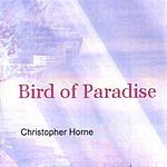 Christopher Horne Bird Of Paradise