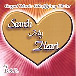 D.S.D. Search My Heart