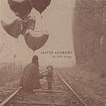 David Andrews The Little Things