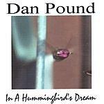Dan Pound In A Hummingbird's Dream