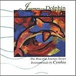 Cynthia Jordan Journey Of The Dolphin