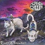 Aja West & Cheeba Flash & Snowball