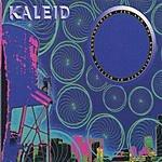 Kaleid Zen And The Surveillance Of Bicycle Messengering