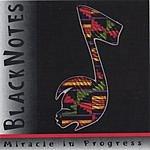 BlackNotes Miracle In Progress