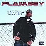 Flambey Destiny (Parental Advisory)