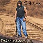 Adam Determination