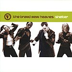 The Brand New Heavies Shelter