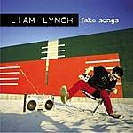 Liam Lynch Fake Songs