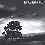 The Gathering Field The Gathering Field