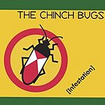 The Chinch Bugs Infestation