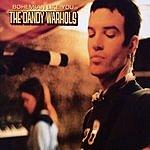 The Dandy Warhols Bohemian Like You