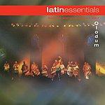Olodum Latin Essentials, Vol.7