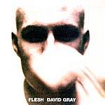 David Gray Flesh