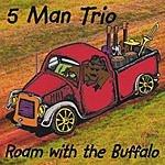5 Man Trio Roam With The Buffalo