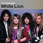 White Lion The Essentials: White Lion