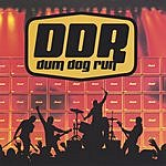 Dum Dog Run Dum Dog Run