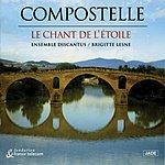 Compostelle Le Chant De L'etoile