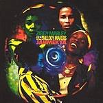 Ziggy Marley & The Melody Makers Jahmekya