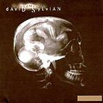 David Sylvian God Man