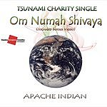 Apache Indian Om Numah Shivaya