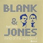 Blank & Jones Mind Of The Wonderful