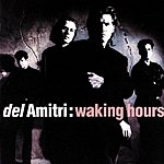 Del Amitri Waking Hours