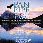 Freespirit Pan Pipe Moods Two
