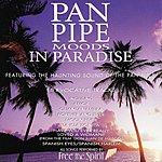 Freespirit Pan Pipe Moods In Paradise