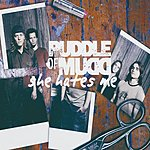 Puddle Of Mudd She Hates Me (2-Track Single)