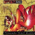 At The Gates Terminal Spirit Disease