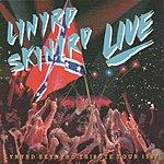 Lynyrd Skynyrd Southern By The Grace Of God: Lynyrd Skynyrd Tribute Tour, Vol.1 (Live)