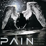 Pain Nothing Remains The Same