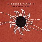 Robert Plant Morning Dew