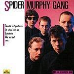 Spider Murphy Gang Mir San A Bayrische Band